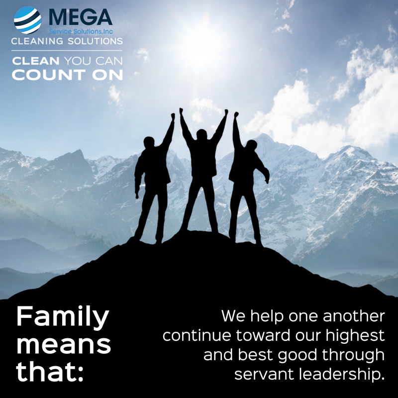 mega service solutions
