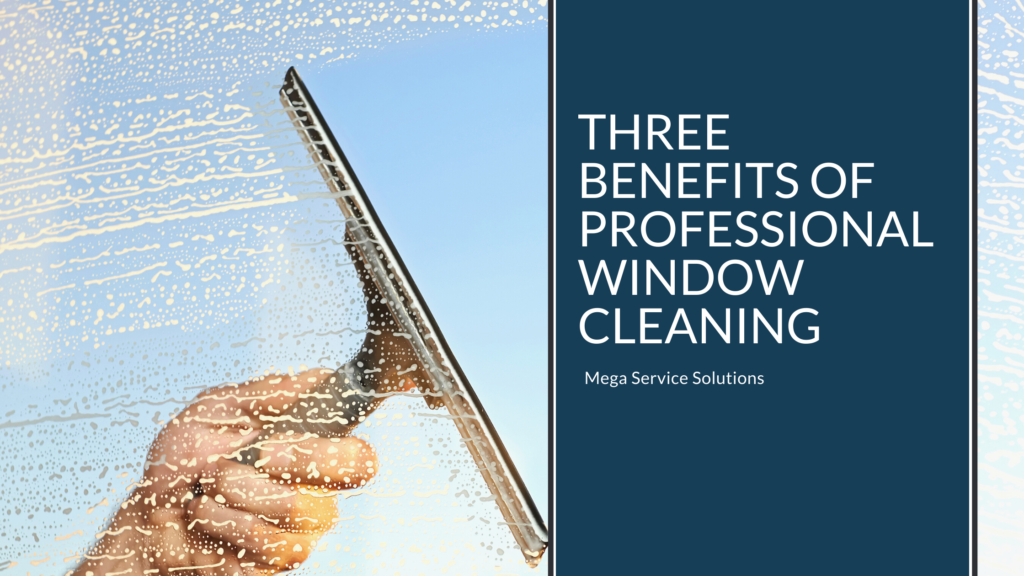 Professional Window Cleaning in Tampa
